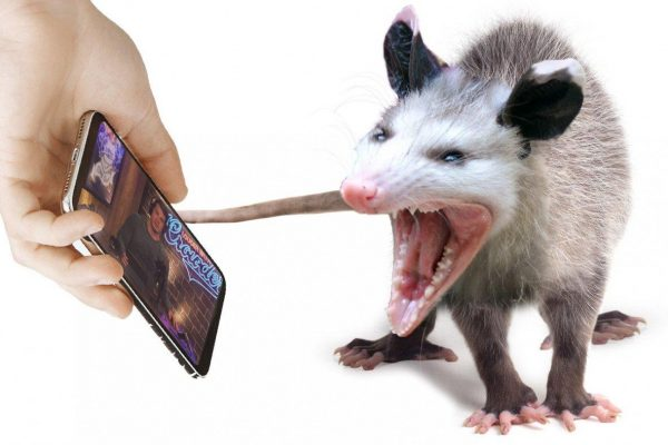 YouTube to Run All Potentially Offensive Content Past Easily Spooked Possum