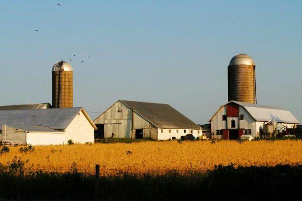"""Farmageddon"": Trump Announces More Emergency Bailouts as US Farm Debt Soars to $416 Billion"